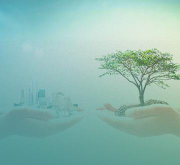 RC Ambiental - Palestra Online