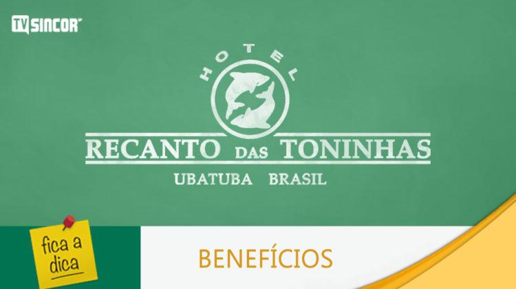 capa_ficaadica_toninhas